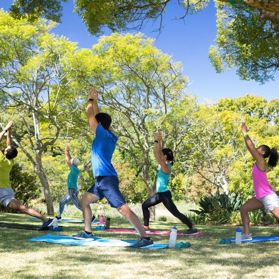 Group of people performing stretching exercise in the park on a sunny day